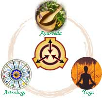 Ayurveda + Yoga: How they support each other @ Boulder Healing Hub | Boulder | Colorado | United States